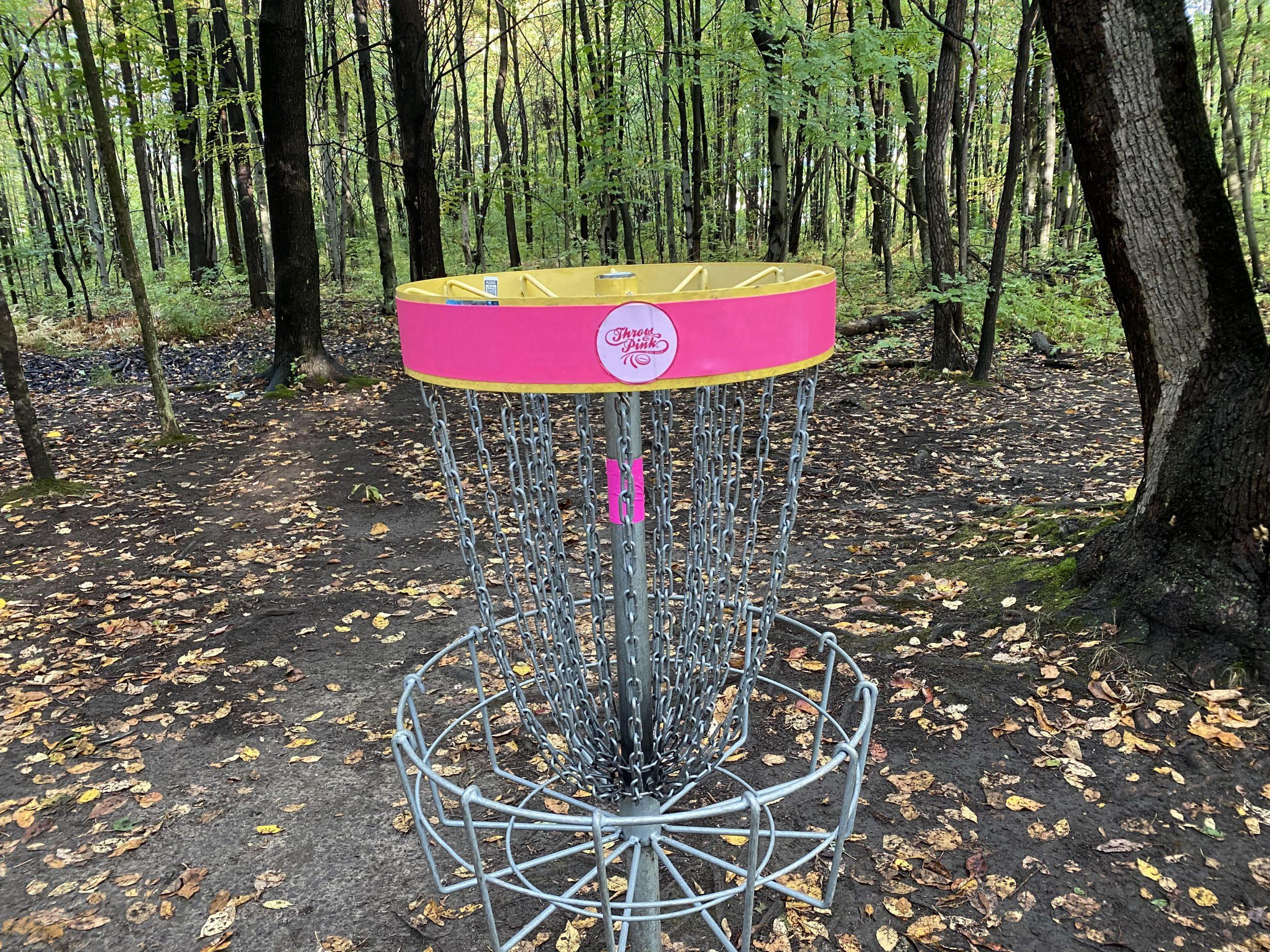 Throw Pink disc golf basket